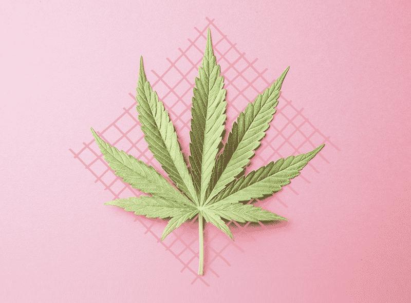 Cosas que no sabías que se podían hacer con marihuana