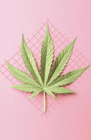 Vino con marihuana